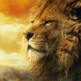 獅子的品格